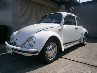 1999 MEXICO BEETLE